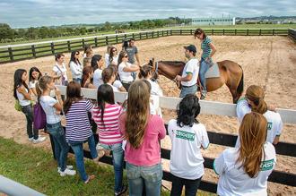 Centro de Reabilitação Equestre