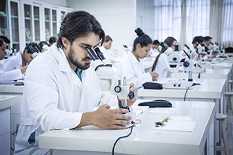 Laboratório de Entomologia: tem como objetivo gerar, adaptar e validar tecnologias ambiental e socialmente sustentáveis, de base ecológica, para o manejo de pragas (insetos e ácaros)