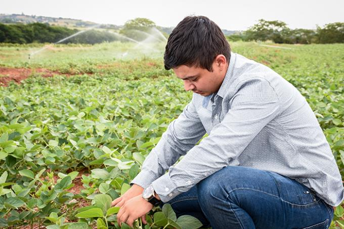 Agronomia demonstra alto índice de empregabilidade