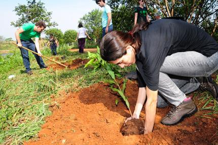 Futuros engenheiros ambientais realizam plantio de árvores