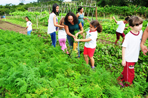 Visita Escola Catarina Martins Artero - 12/06/2015