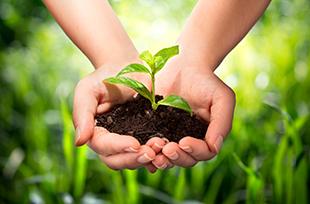 Metodologias Aplicadas à Educação Ambiental