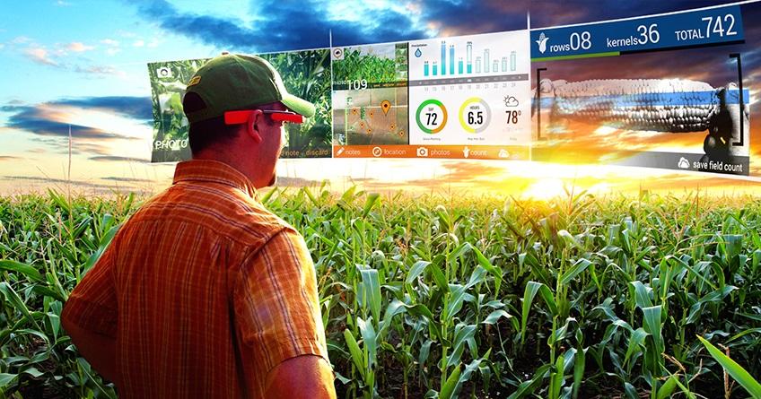 Direito Rural e Agronegócio: Temas Atuais, Ações e Pratica