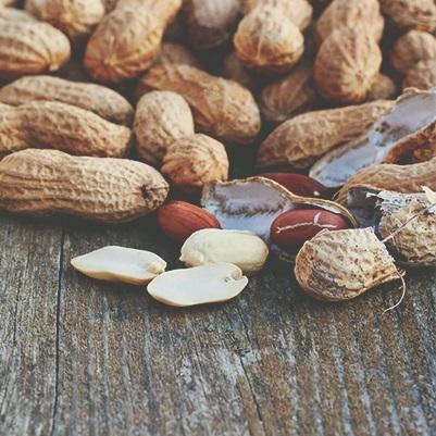 Produção e manejo da cultura do amendoim para alta produtividade
