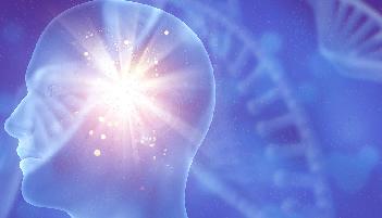Neuropsicologia - Turma 5