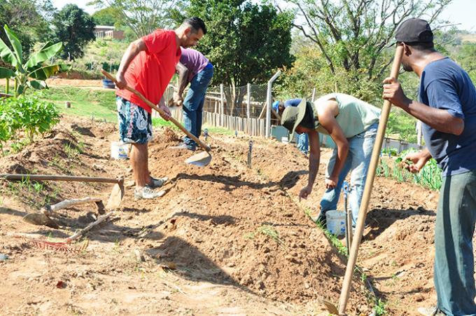 Ciências agrárias contribuem na obra social da Cristolândia